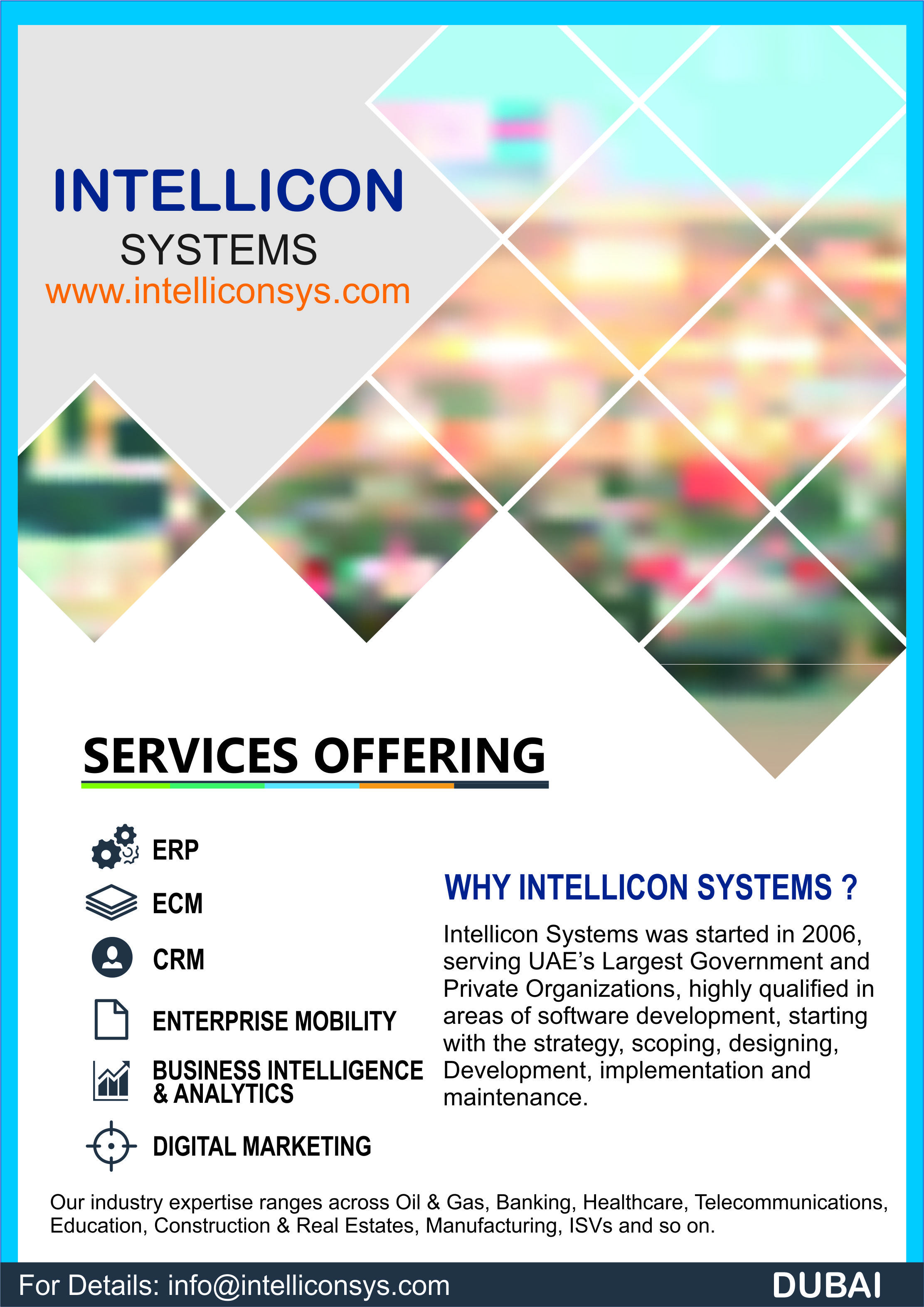 Intellicon Systems Service Offerings